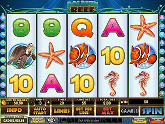 Play Dolphin Reef Slots Online